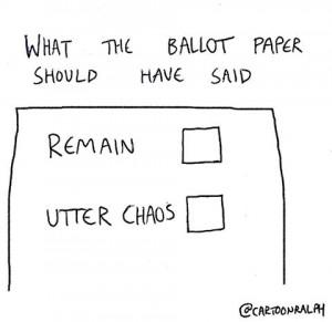 eu vote ballot